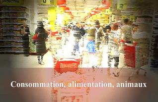 Consommation, alimentation, animaux